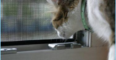 Wie das Moskitonetz auf dem Fenster zu installieren
