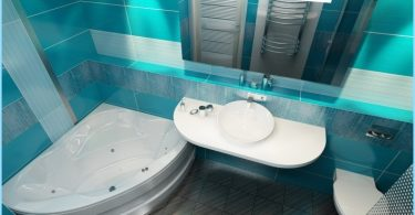Das Projekt kombiniert Badezimmer