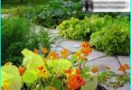 Outdoor-Vorhänge für Pavillons und Terrassen: Arten von Vorhängen + Design-Optionen