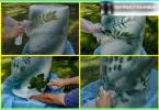 """Wie ein Bett aus Gemüse und Kräutern zu machen: create """"appetitlich"""" ein Mini-Garten"""