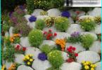Arbeit im Garten im Monat März: Wie für Ihren Garten zu kümmern?