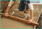 Anpflanzung und ein Beispiel für das Gerät - Wie Sie Ihre eigenen Hände Steingärten zu machen