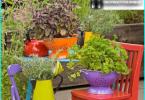 Top 10 Pflanzen für Solarien -, die auf der Sonnenseite sitzen?