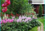 Astilba: von Spezialisten Regeln und Richtlinien für die Pflege der Pflanzung