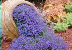 Schutz von Holz gegen Feuchtigkeit, Feuer, Insekten und Fäulnis: Übersicht
