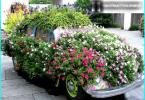 Wie eine Kettensäge für Haus und Garten zu wählen - was ist besser und warum?