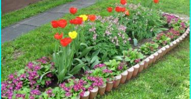 Wie ein Kultivator in Frage zu wählen: was ist besser zu kaufen?