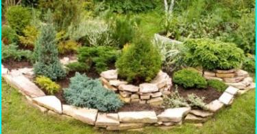 Überprüfung der Optionen + Tipps zur Auswahl: Wie man einen Garten Sprayer zu wählen